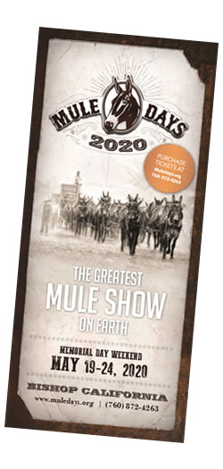Mule Days 2020 Brochure Cover